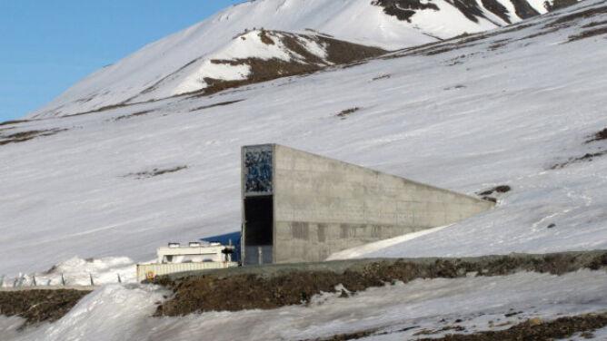 Zmrożony tunel chroni miliony nasion