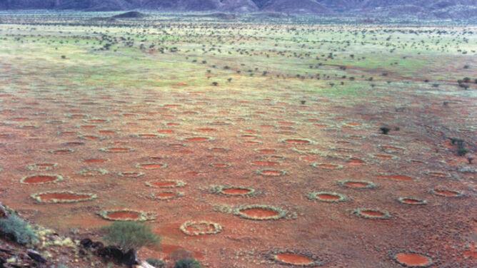 """""""Czarcie kręgi"""" w Namibii"""