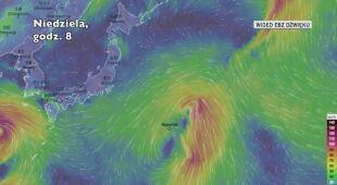 Prognozowana trasa burzy tropikalnej Nepartak (Ventusky)